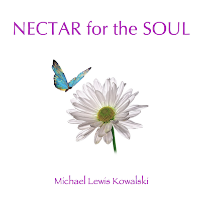Nectar CD Cover
